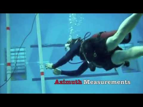 Antennas for a Mussel-Based Underwater Wireless Network