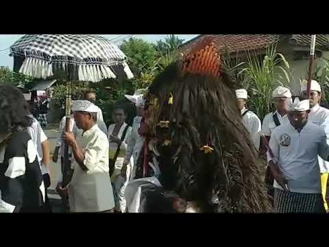 Ngelelawang Desa  Pekraman  Bajera