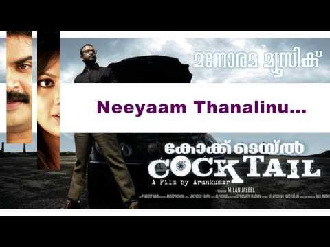 Neeyam Thanalinu | Cocktail