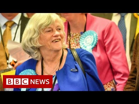 The winners and losers of European Election night - BBC News