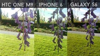 Samsung Galaxy S6 vs iPhone 6 vs HTC One M9 - Ultimate Camera Comparison!