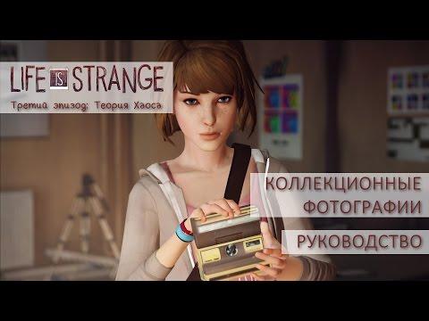 Коллекционные фотографии | Life is Strange ep. 3: Теория Хаоса [Руководство]