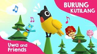 Burung Kutilang  - Lagu Anak Dipucuk pohon cemara Burung Kutilang Berbunyi