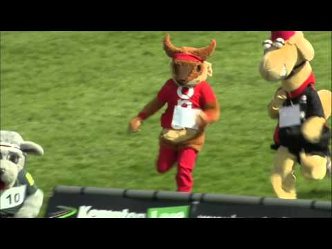 2013 Kempton Mascot Grand National Race