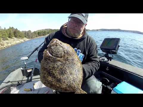 Monster Hunt - Swedish Westcoast Turbot
