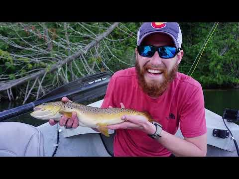 BIG BROWNS AND COVID BATS CAUGHT ON PASS LAKE, WA : Fly Fishing 2020