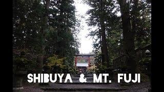 Japan Vlog Part IV: Shibuya, Tokyo & Mt Fuji