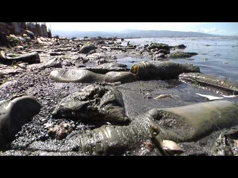 Sights & Sounds: Polluted coastal village in Haiti