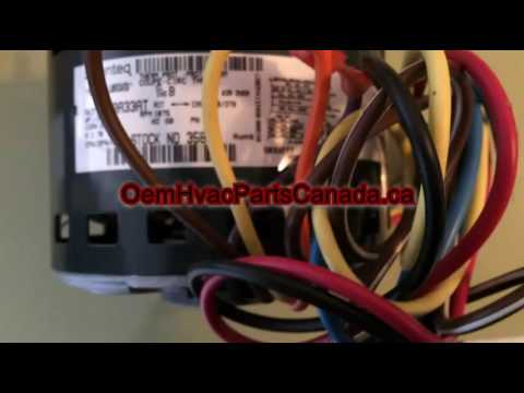 hqdefault direct drive genteq blower motor ge 3586 1 3 hp, 230 volts youtube genteq motor wiring diagram at gsmportal.co
