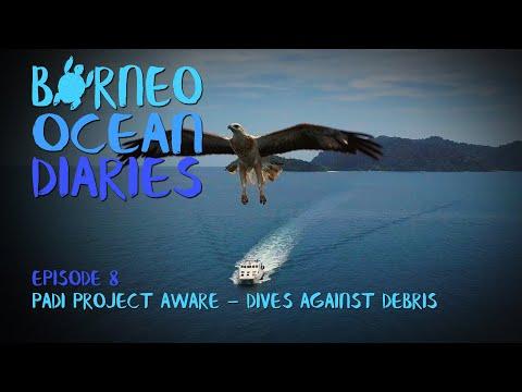 Video Of The Week | PADI PROJECT AWARE - Dives Against Debris [4K] | Borneo Ocean Diaries (S01E08) | SZtv