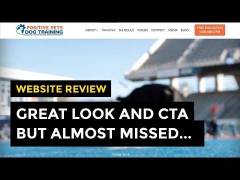 Website Review: Excellent Dog Trainer Site, But I *Almost* Missed... | Episode 001