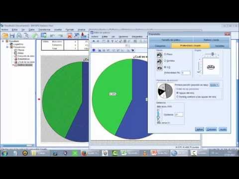 Manual Básico IBM SPSS Statistics V  22 (Parte 1 de 2)
