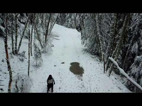 Snow Day: Ashford, WA