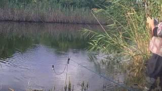 Рыбалка в Новочеркасске!!!х. Епифанов июнь 2016