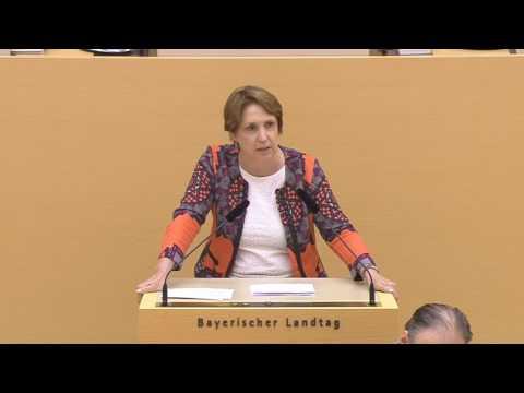 """Rede im Landtag am 06.07.2017 zu """"Regierungserklärung Bayern Digital"""""""
