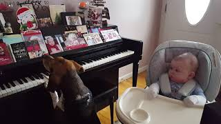 Piano Lessons For Baby!