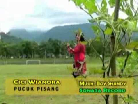 Pucuk Pisang - Cici Wianora