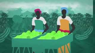 Development Progress: putting employment at the centre of economic transformation