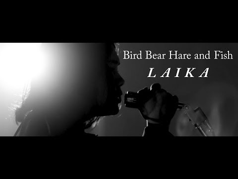 Bird Bear Hare and Fish - ライカ (Music Video)