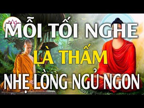Thương Ghét Buồn Giận Là DO Đâu- Bài Giảng Phật Giáo Nghe Một Lần Tiêu Tan Sầu Não - Thuyết Pháp Hay