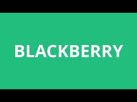 How To Pronounce Blackberry - Pronunciation Academy