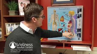 Newtown PA Chiropractor - What Causes Back Pain