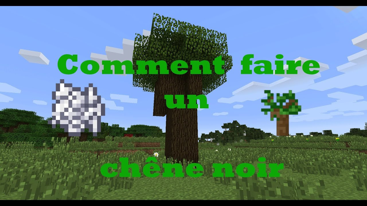 tuto minecraft comment faire pousser un ch ne noir youtube. Black Bedroom Furniture Sets. Home Design Ideas