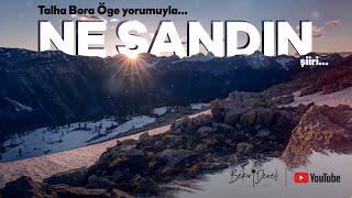 Ne Sandın Şiiri - Talha Bora Öge'nin nefis yorumu ile...