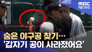 숨은 야구공 찾기…'갑자기 공이 사라졌어요' (2021.06.07/뉴스데스크/MBC)