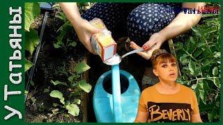 СОДА СУПЕР средство для САДА и ОГОРОДА! Сода - подкормка для: томатов, огурцов и др растений