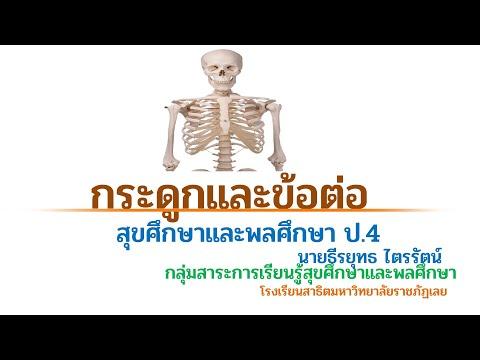สุขศึกษาชั้น ป. 4 เรื่อง ระบบกระดูกและข้อต่อ
