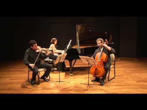 Ana Flávia Frazão, José Maria Blumenschein e Dennis Parker. R.Schumann: Piano Trio op.80