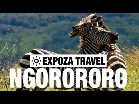 Ngorongoro Crater Vacation Travel Video Guide