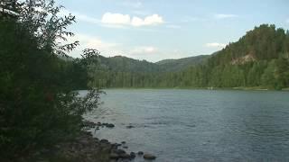 река Лебедь с Турочак Горный Алтай