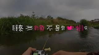波爸釣魚趣-飛蠅路亞通通來(Lure Fishing/Fly Fishing/溪哥/馬口)