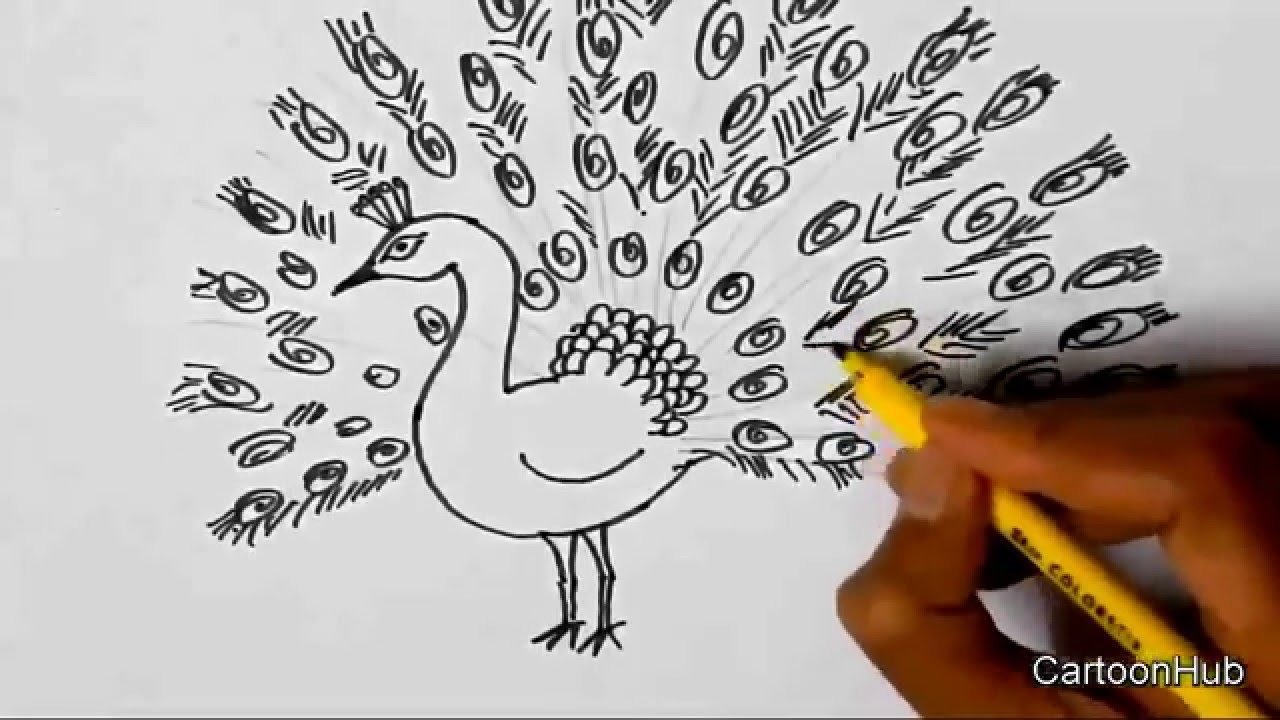 how to draw a dancing peacock for beginners lesson step by step youtube how to draw a dancing peacock for beginners lesson step by step