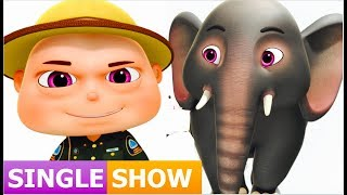Zool Babies Rescue Elephant  Single Episode  Zool Babies Series  Videogyan Kids Shows