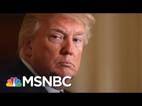 'Democrats' Taking Over The Donald Trump White House? | The Last Word | MSNBC