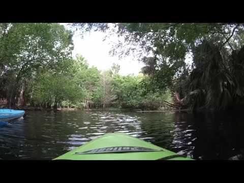 Kayaking - Riverbend Park /Loxahatchee River Jupiter FL April 30, 2017