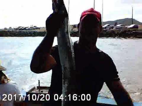 Pescaria galera irati rio azul e são mateus do sul pr