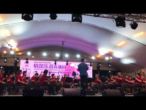 A Little Happiness/小幸运 ( Singapore Chinese Orchestra )