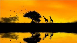8 HOURS Relaxing music for Stress relief - Meditation music, healing therapy, yoga, sleeping