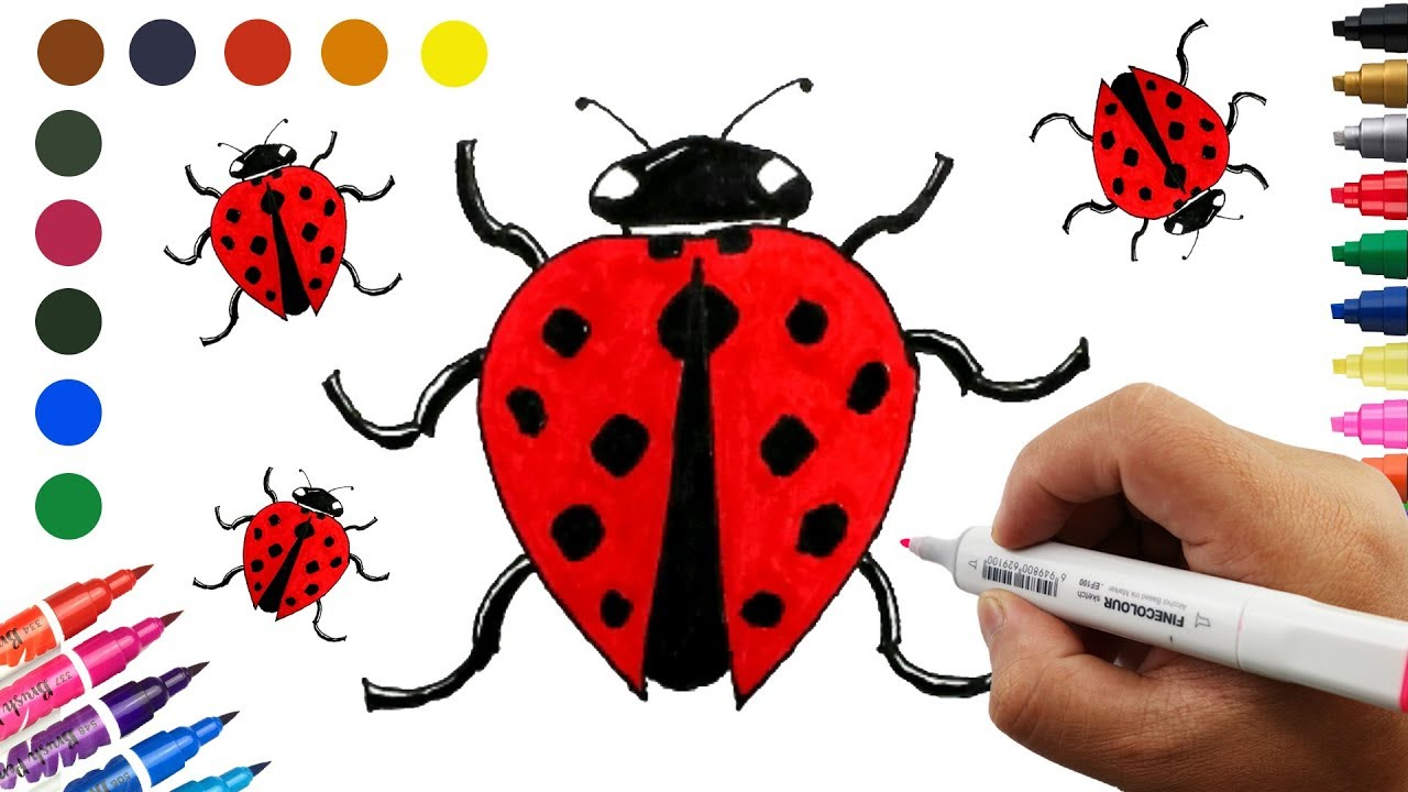 How To Draw a Ladybug Coloring Pages Learn Colors for Kids Ladybug ...