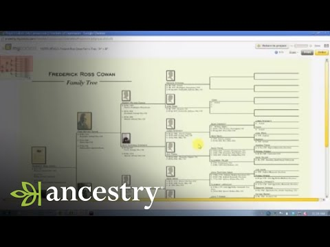 Clean Up Your Family Tree