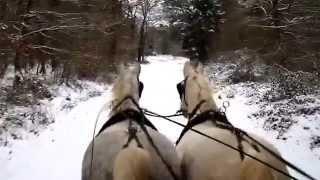 Sortie neige 29 12 2014 avec les arabos-boulonnais Qualibre et Ramdam