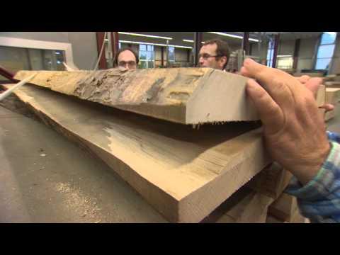 Wanderstab Gemse Vanilla Stabl/änge 117 cm Ahorn//L/ärche