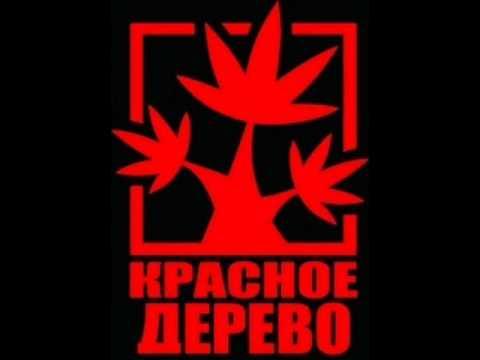Красное Дерево - Сынок при участии Михалыч