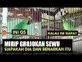 Viral Ada Cucak Ijo Mirip Grojokan Sewu Benarkah Itu Audio(.mp3 .mp4) Mp3 - Mp4 Download