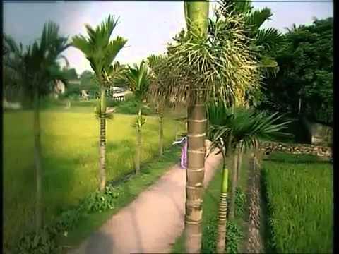 Quê Hương - Ca sĩ Phạm Phương Thảo