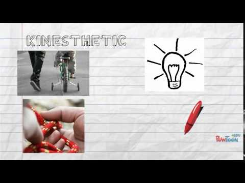 Visual, Auditory, And Kinesthetic Learning Styles